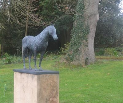 Walking horse by Janis Ridley, Sculpture, Bronze